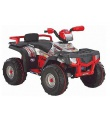 Peg Perego POLARIS SP 850 24V SILVER OD 05180